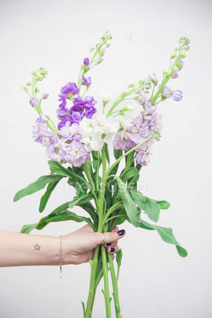 Female hand holding bunch of fresh purple flowers — Stock Photo