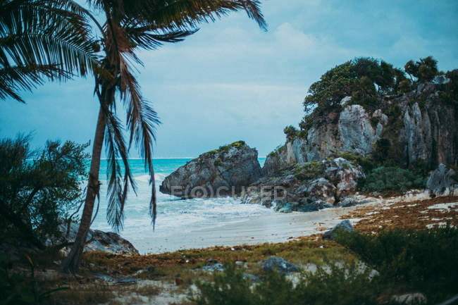 Тропічний пейзаж піску узбережжя з скель і долонь — стокове фото