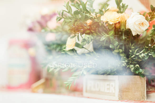 Close-up of fresh white roses on blurred background — Stock Photo