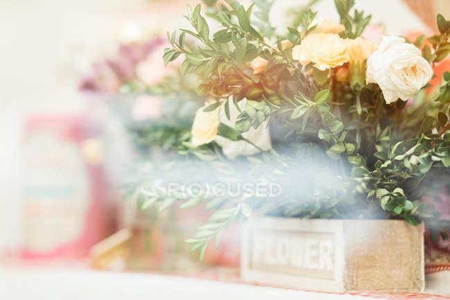 Nahaufnahme der frische weiße Rosen auf unscharfen Hintergrund — Stockfoto