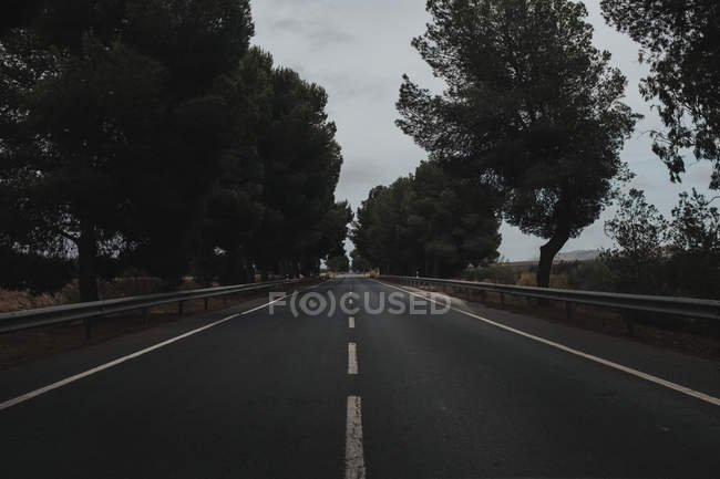 View to asphalt road in countryside at cloudy day — Stock Photo