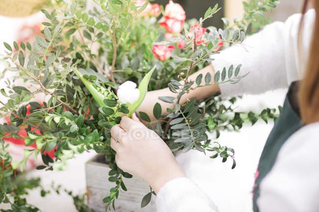 Primo piano di mani femminili che fanno la disposizione floreale in negozio di fiori — Foto stock