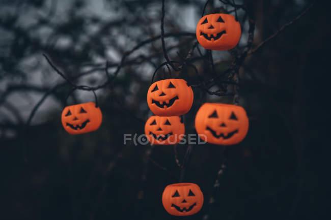 Citrouilles scary halloween accroché sur les branches de l'arbre — Photo de stock
