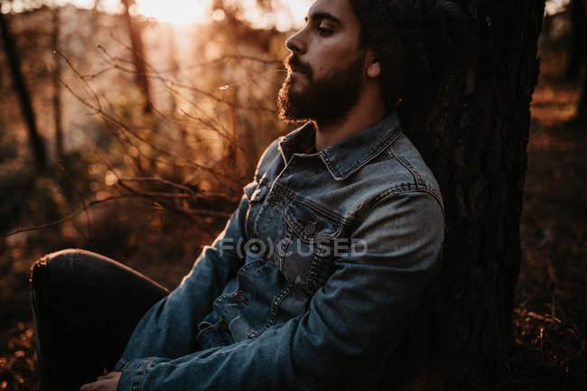 Сидить чоловік, спираючись на дерева в лісі, захід сонця — стокове фото