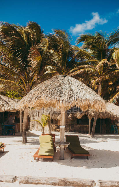 Sunbeds and thatched umbrellas at lounge zone on tropical beach with palms. — Stock Photo