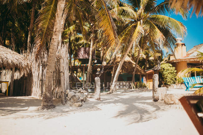Resort buildings and palms on white sandy beach in tropics. — Stock Photo