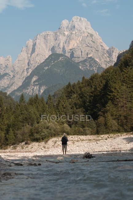 Vista traseira do homem na natureza — Fotografia de Stock