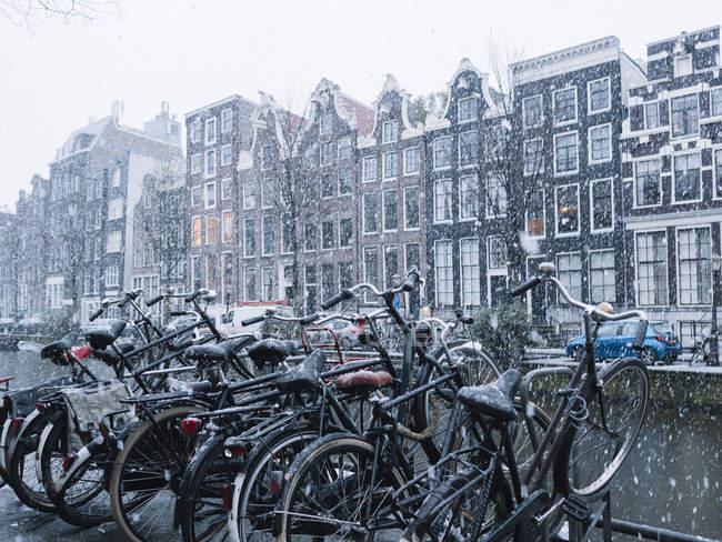 Fila de bicicletas estacionadas na rua no dia nevado — Fotografia de Stock