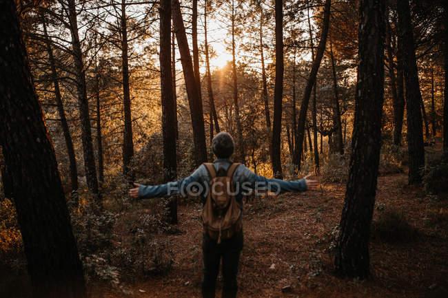 Rückansicht des Backpacker posiert mit ausgestreckten Armen in herbstlichen Wälder — Stockfoto