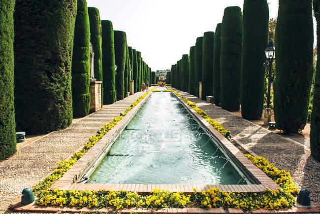 Park-Gasse mit Teich inmitten der Reihen der grünen Spalte Büsche — Stockfoto