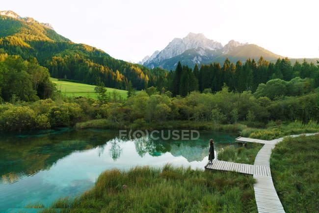Далеких зору людини в маленькому ставку в зелені ліси себе — стокове фото