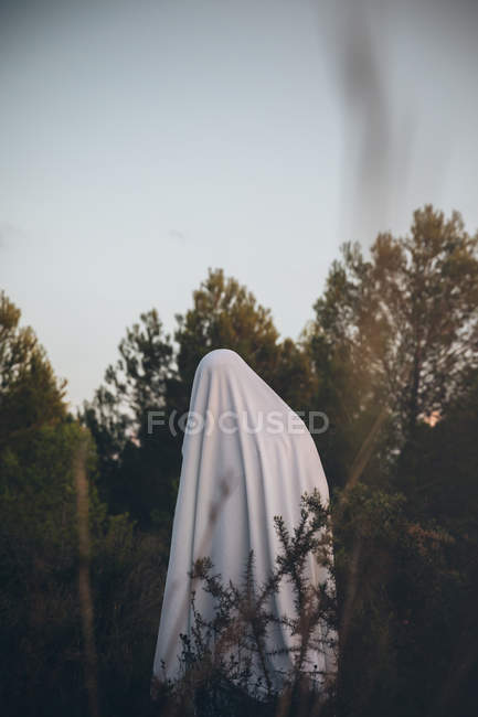 Frightening ghost standing alone in forest. — Stock Photo