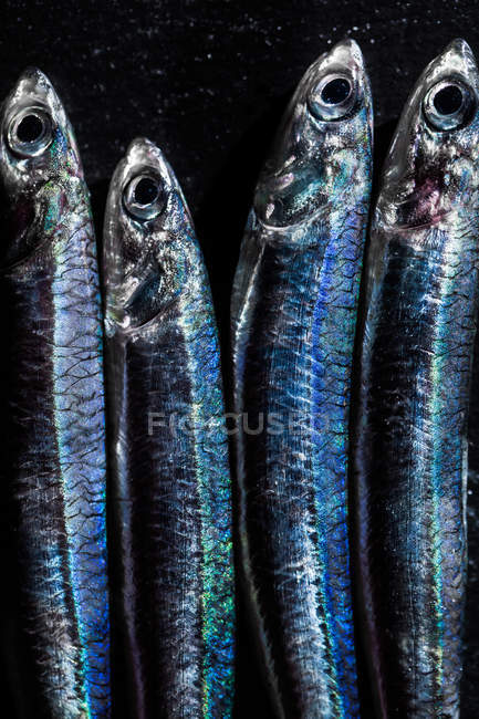 Close up of fresh anchovies on black stone background. — Stock Photo