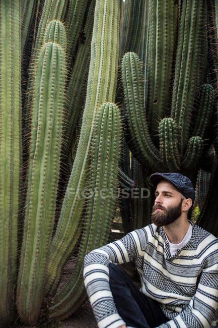 Retrato de homem barbudo no cap sentado perto de enormes cactos espinhosos e desviar o olhar. — Fotografia de Stock