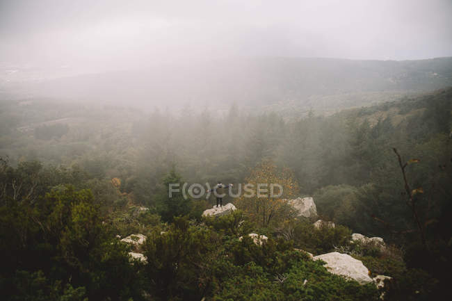 Person with wide hands standing on stone in misty forest. — Stock Photo