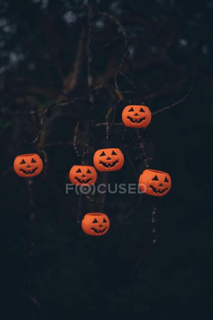 Citrouilles scary halloween suspendu à l'arbre nu — Photo de stock