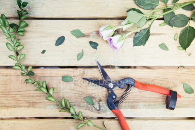 Forbici da giardino su tavolo in legno con fiori freschi recisi e foglie — Foto stock