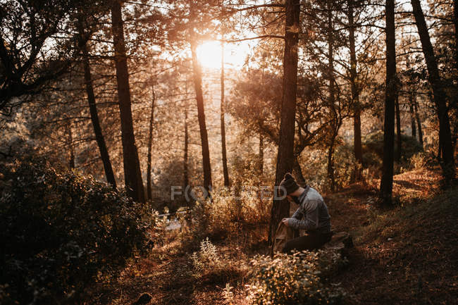 Man sitting in forest and looking into backpack while scenic sunset — Stock Photo