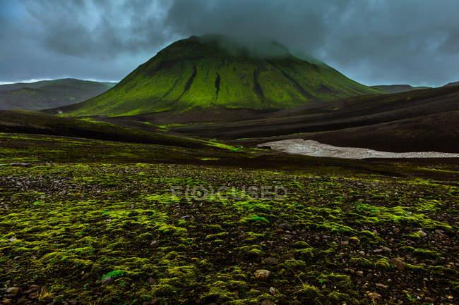 Verte colline couverte de brouillard — Photo de stock