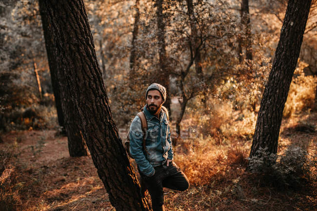 Man leaning on tree in forest and looking away — Stock Photo