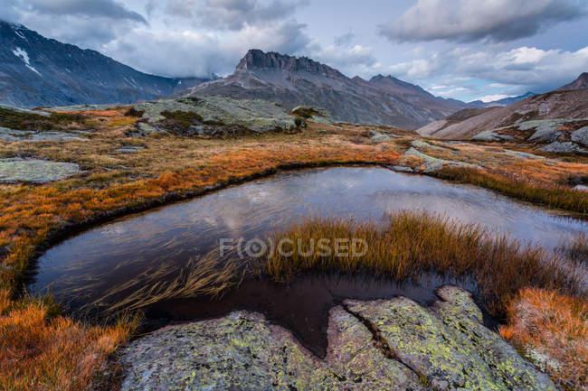 Vallée de montagne avec étangs — Photo de stock