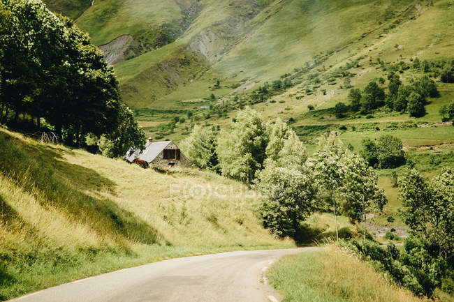 Rural road amid rolling green hills — Stock Photo