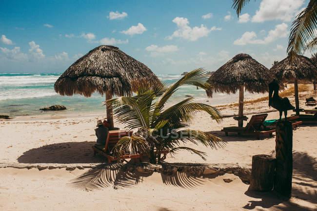 Vista panoramica di sedie a sdraio sotto gli ombrelloni di paglia sopra turchese marino — Foto stock