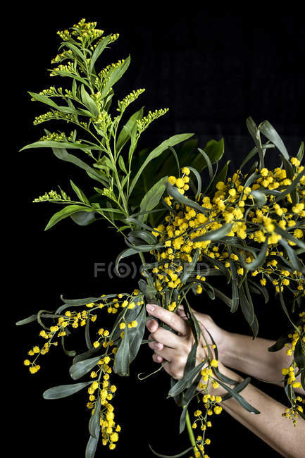 Hand holding bunch of yellow flowers — Stock Photo