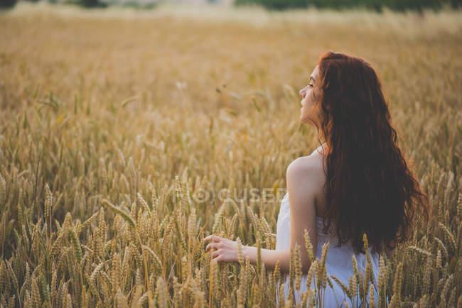 Портрет червоні волосся дівчини постановки на полі жита на заході сонця — стокове фото