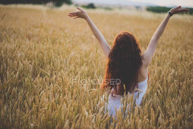 Вид сзади на молодую девушку с длинными вьющимися рыжими волосами, позирующую с руками на ржаном поле — стоковое фото