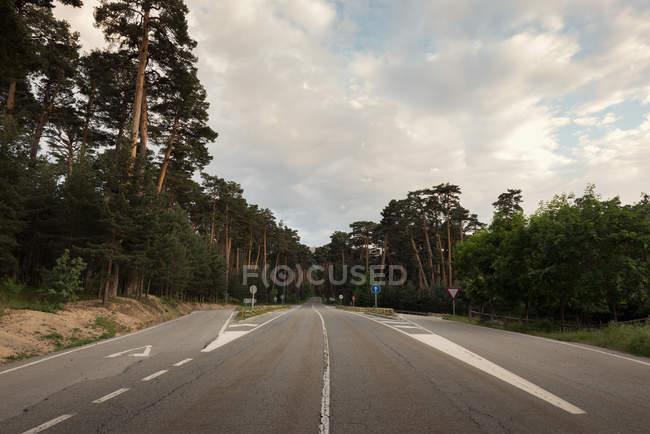 Forststraße auf Land — Stockfoto