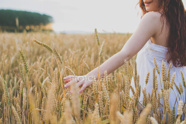Cropped image of red haired girl walking at rye field and palming spikelets — Stock Photo