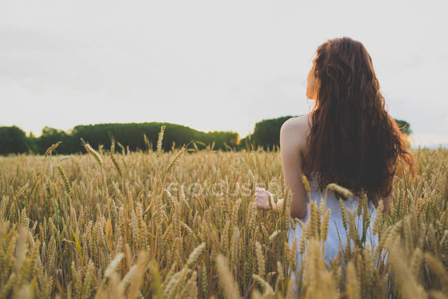 Back view of young girl with curly red hair standing on rye field and admiring sunset — Stock Photo