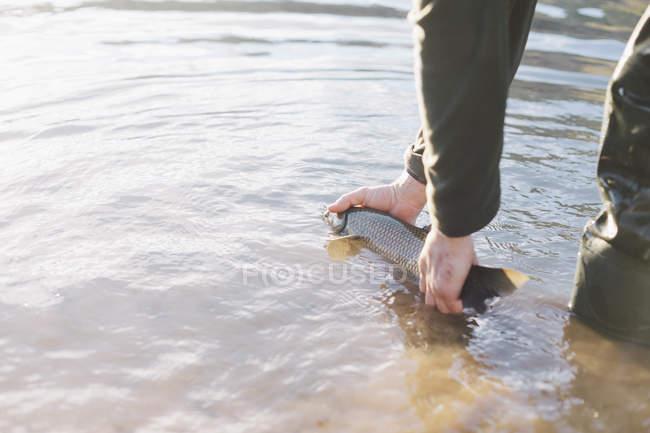 Pêcheur agricole mettant les captures dans l'eau de la rivière — Photo de stock