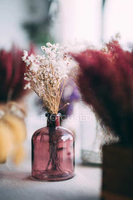 Dried flowers in glass jar — Stock Photo
