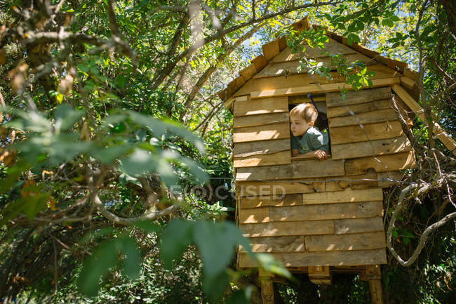 Bottom view of blonde boy looking out of wooden treehouse window on sunny day — Stock Photo
