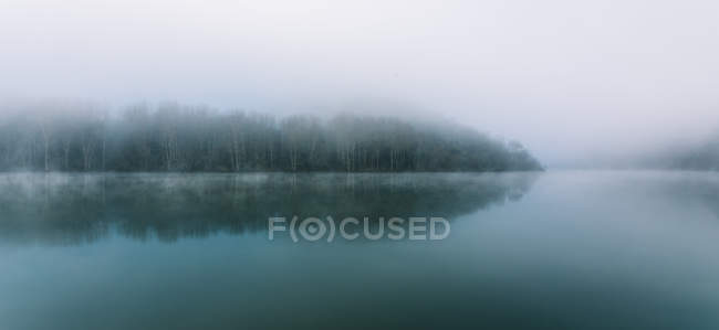 Picturesque panorama of calm lake surface and trees on shore in thick fog. — Stock Photo