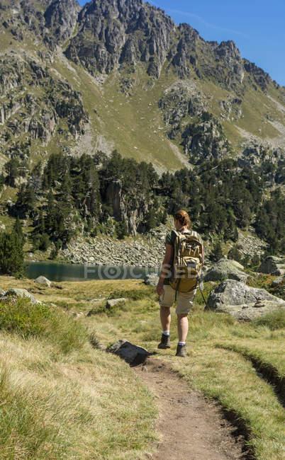 Vista traseira do feminino caminhante andando pelo vale da montanha — Fotografia de Stock