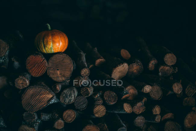 Pumpkin lying on pile of firewoods — Stock Photo