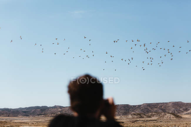 Rear view of man taking pictures of flying birds on sunny day in desert. — Stock Photo