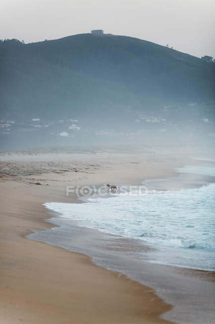 Вид на туманный Песчаное побережье и море — стоковое фото