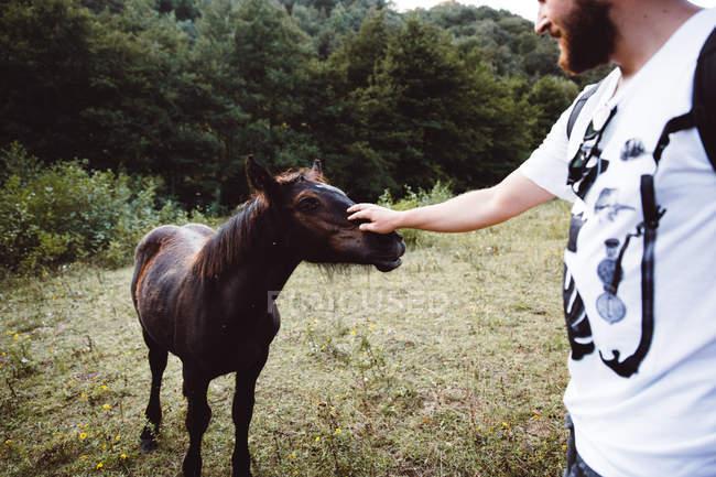 Crop barbudo homem de pé e acariciando potro pequeno na natureza . — Fotografia de Stock