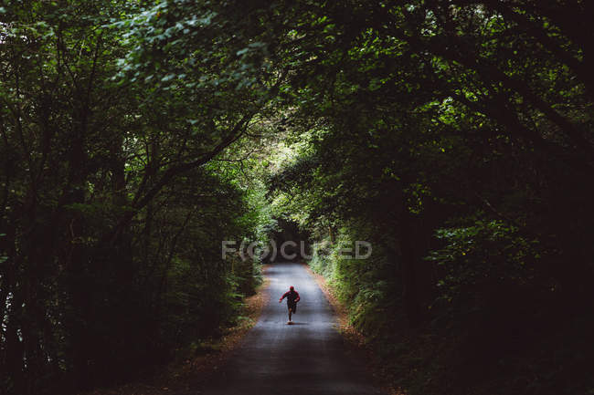 Man on skateboard on forest road — Stock Photo