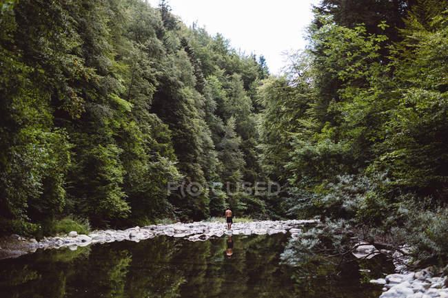 Vista à distância do homem em pé na margem do rio na floresta — Fotografia de Stock