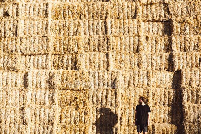Mann in schwarzem T-Shirt und kurzer Hose steht vor riesiger Heuhaufen-Wand. — Stockfoto