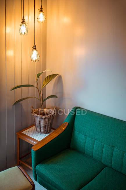 Углу гостиной с potted завод, освещенные современных фонарей — стоковое фото