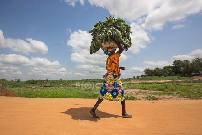 Benin, África - 31 de agosto de 2017: Vista lateral de mujer caminando en el camino y llevar la cesta con hierba en la cabeza. - foto de stock