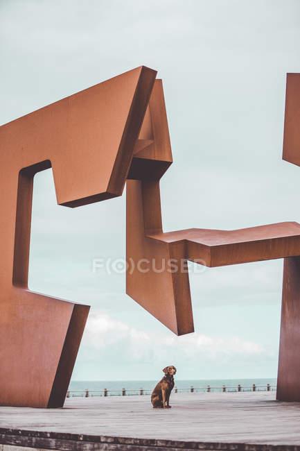 Brown cane labrador seduto sotto enorme installazione d'arte moderna sullo sfondo del mare — Foto stock
