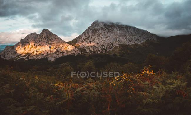 Чудовий краєвид Вудс і Скелясті гори діапазон під хмарами — стокове фото