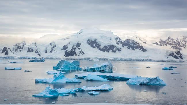 Vista para a paisagem da Antártida com icicles flutuando na baía — Fotografia de Stock